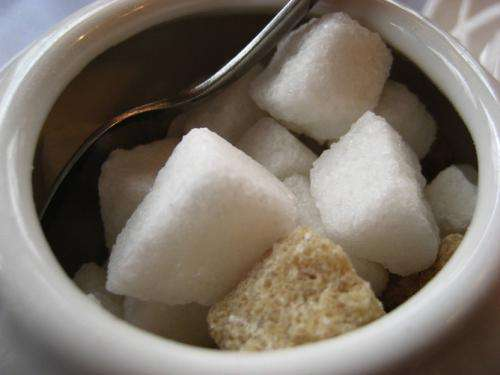 Sweet enough? Separating fact from fiction in the sugar debate