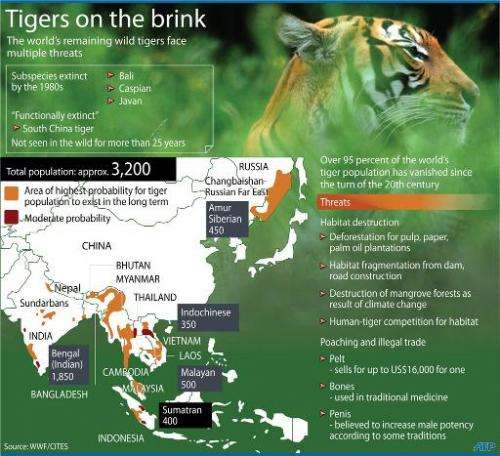 The 13 countries with wild tiger populations have agreed to double their numbers by 2022
