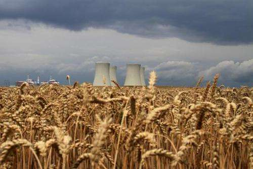 The four cooling towers of Temelin Nuclear Power Plant are seen in the background of a grain field in the village of Temelin on