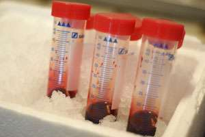 The quest for long-lasting blood