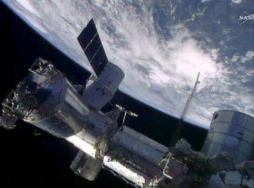 The SpaceX Dragon cargo craft is seen berthed to the Earth-facing port of the International Space Station's Harmony node, on Apr