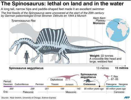 The spinosaurus: lethal on land and in the water