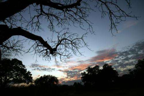 The sun sets at Selous Game Reserve in southern Tanzania, on September 2, 2007
