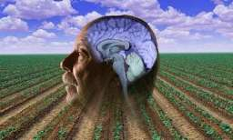UCLA researchers uncover how pesticides increase risk for Parkinson's disease