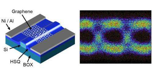 Ultrafast Graphene based photodetectors with data rates up to 50 GBit/s