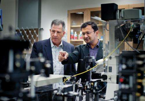 UT Arlington nanoparticles could provide easier route for cell therapy
