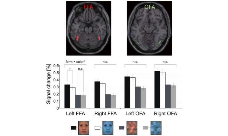 Brain regions sensitive to facial color processing