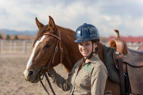 Veterinarians advise ways to avoid infection while traveling with horses