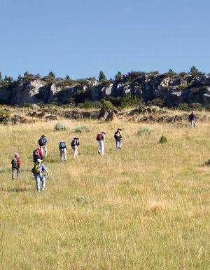 Walking the rocks: GSA Today article studies undergraduate field education