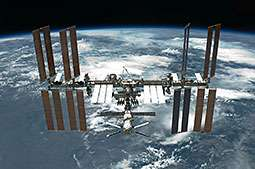 Water fleas prepared for trip to space