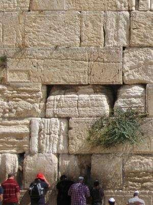 Western Wall weathering: Extreme erosion explained