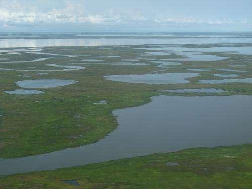 With few data, Arctic carbon models lack consensus