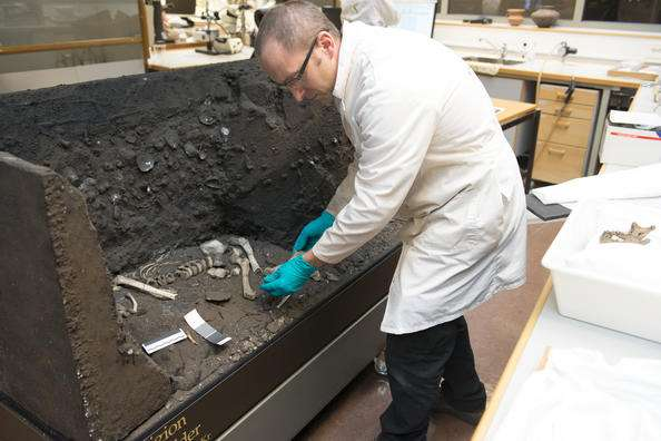 "8000-year-old ""Viste Boy"" sent for DNA analysis"