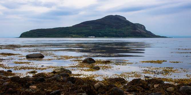 Arran reserve reveals marine protection works