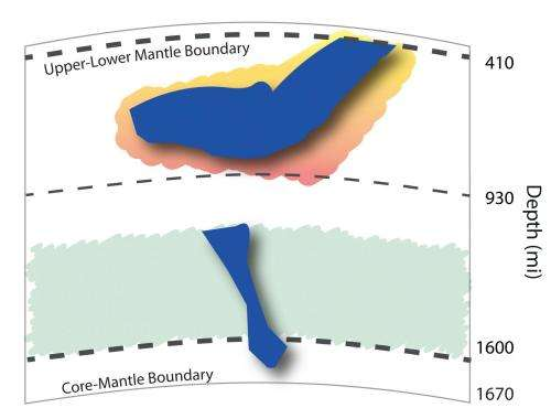 A stiff new layer in Earth's mantle