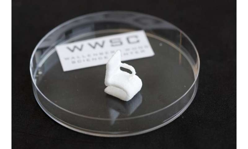 Cellulose from wood can be printed in 3-D
