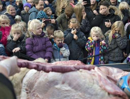 Children look on as zoo employees dissect a lion in the Danish city of Odense on October 15, 2015