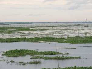 Dating the earthquake that caused the Meghna River avulsion