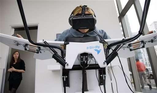 Dream of being a bird? Flight simulator can bring you close