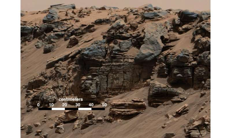 Earth and Mars may have shared seeds of life