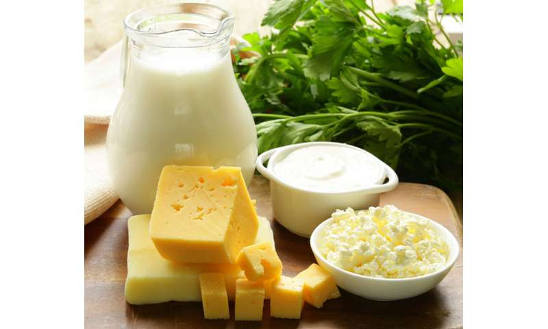 Effectiveness of probiotics in dairy products evaluated