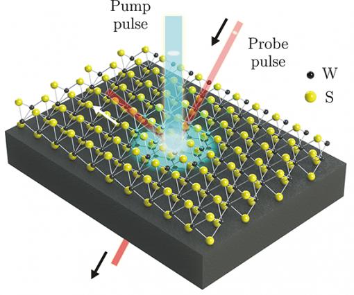 Grad student discovers unique valleytronics properties of tungsten disulfide monolayer film