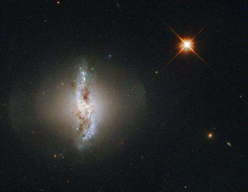 Image: Hubble's view of the polar ring of Arp 230