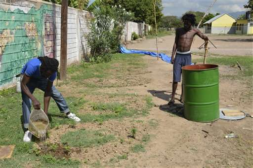 In Jamaica, small amounts of pot decriminalized