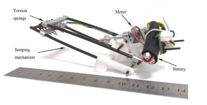 locust inspired robot