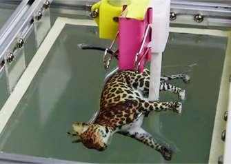 New computational technique advances color 3D printing process