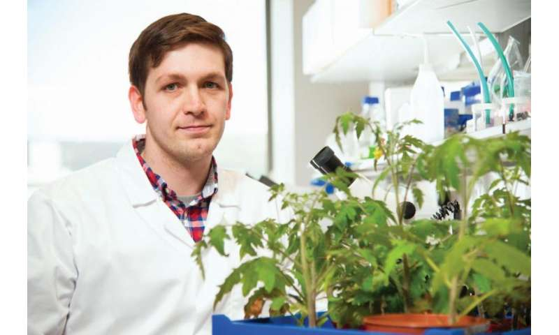 Queen's University Belfast research could revolutionize farming in developing world
