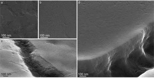 Researchers synthesize lead sulfide nanocrystals of uniform size