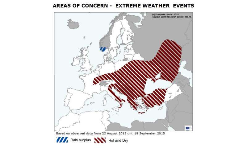 Summer crops in central Europe in poor condition following extremely hot weather