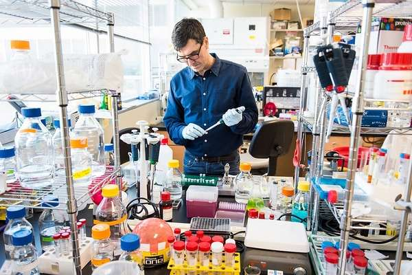 Technique could speed biologic drugs