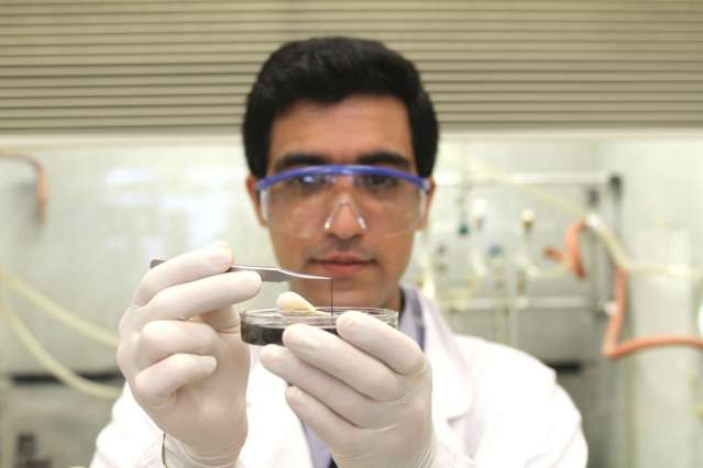 Tiny wires could provide a big energy boost