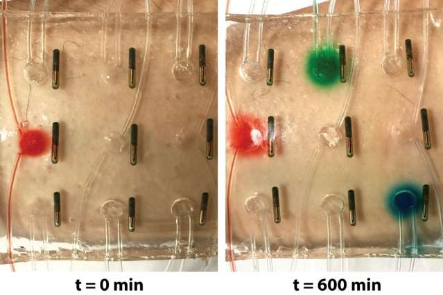 "Water-based ""Band-Aid"" senses temperature, lights up, and delivers medicine to the skin"