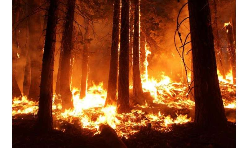 Wildfires emit more greenhouse gases than assumed in California climate targets