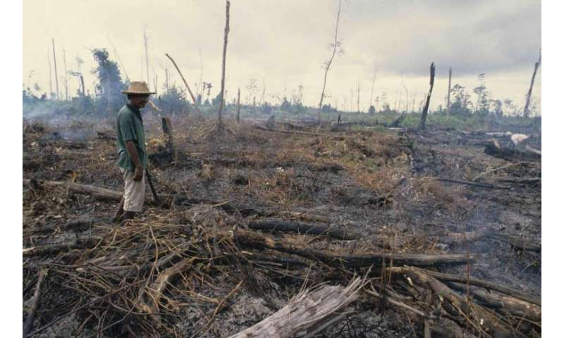 World loses trillions of dollars worth of nature's benefits each year due to land degradation
