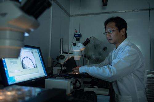 Worms lead way to test nanoparticle toxicity