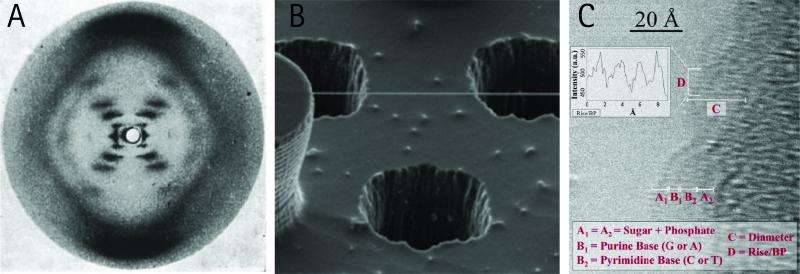 Researchers develop technique to produce a direct image of the DNA helix and its inner structure