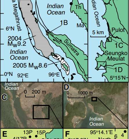Understanding subduction zone earthquakes