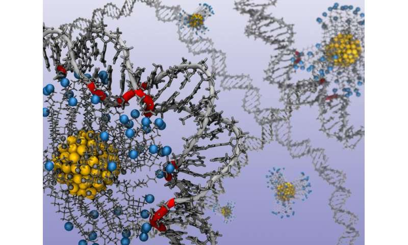Researchers detail how to control shape, structure of DNA and RNA