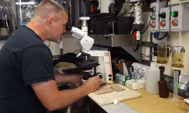 Researchers pinpoint massive harmful algal bloom