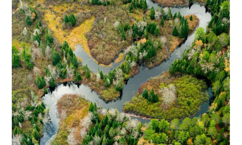 Bigger bang for your buck: Restoring fish habitat by removing barriers