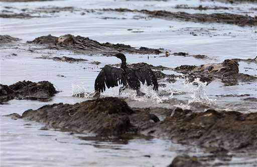 EPA says first day of oil spill spent 'planning'