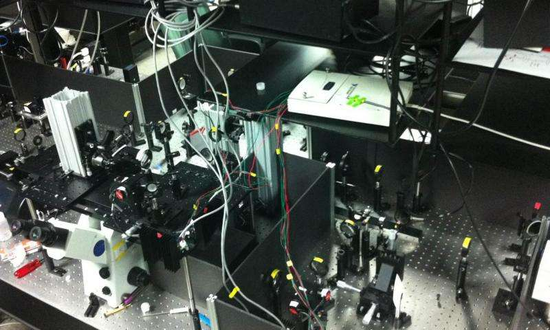 New microscope technique could speed identification of deadly bacteria