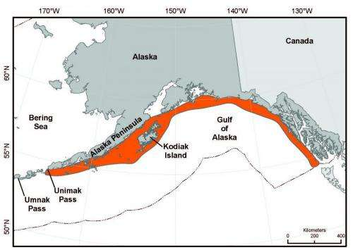 New tool aids US conservation and management of whales, dolphins and porpoises