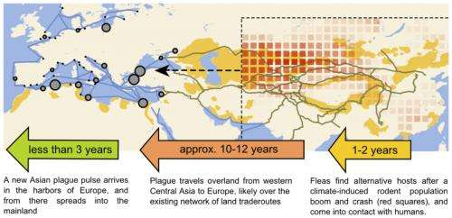 Plague outbreaks that ravaged Europe for centuries were driven by climate change in Asia