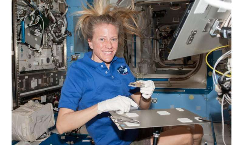 Plants use sixth sense for growth aboard the space station
