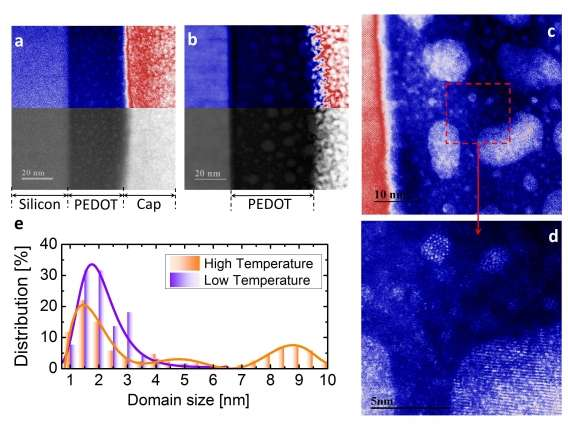Solving mysteries of conductivity in polymers